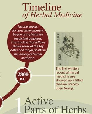 A History of Botanical Herbs for Medicinal Use
