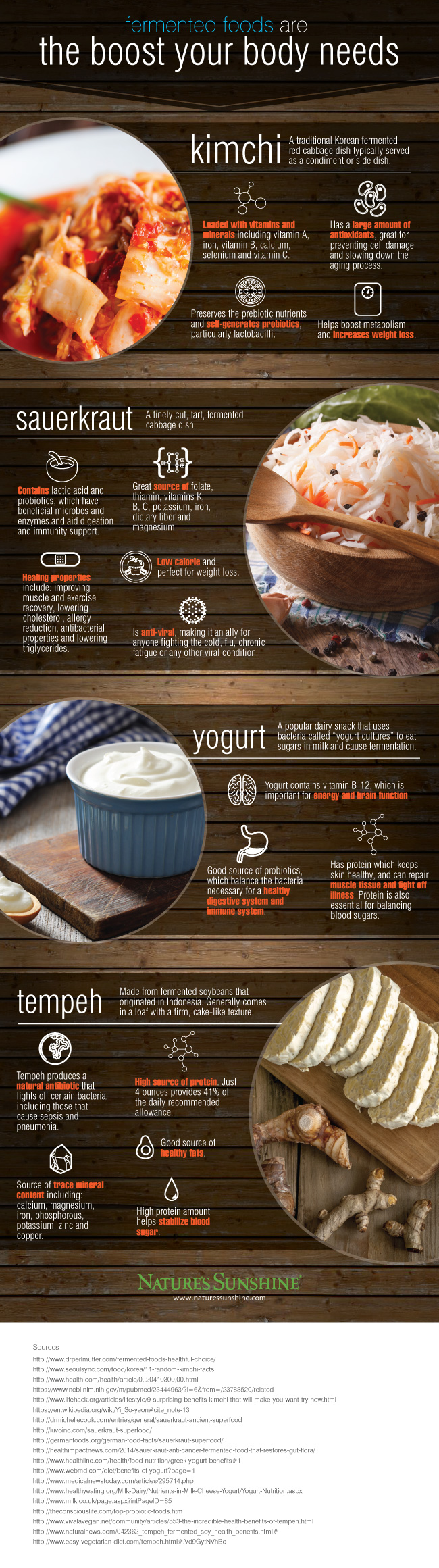 fermented-foods-infographic