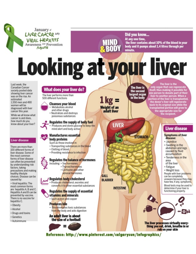 Learn About Your Liver With These Liver Infographics Natures Sunshine