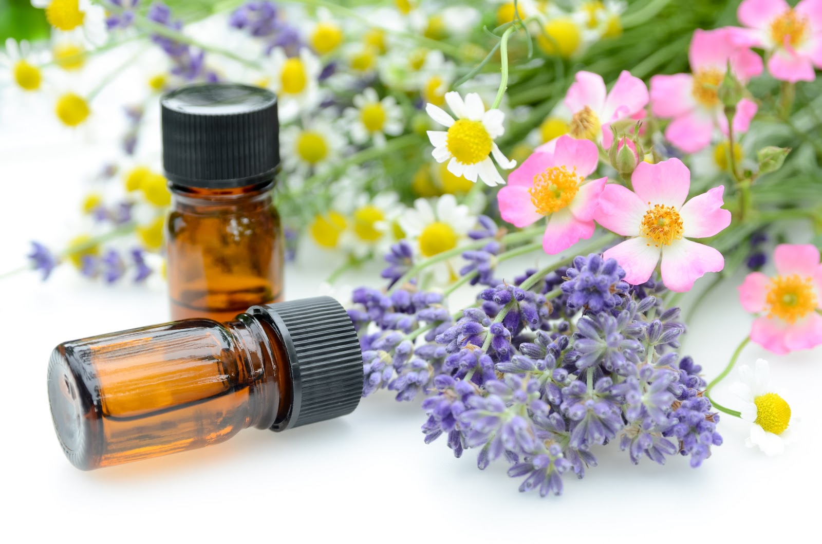 essential oils for aromatherapy treatment with herbal flowers using chamomile, roses, and lavender on white background